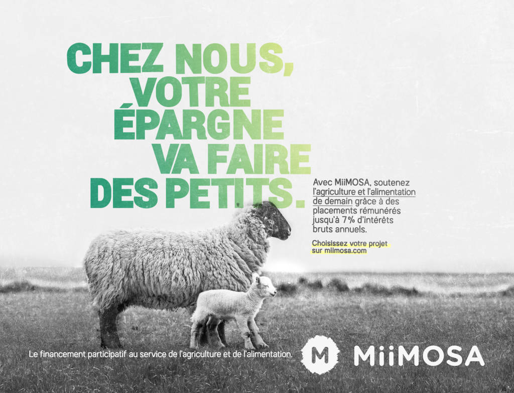Affiches de la campagne Miimosa