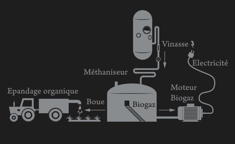 graphique de la démarche ecoresponsable entreprise par la distillerie Bologne