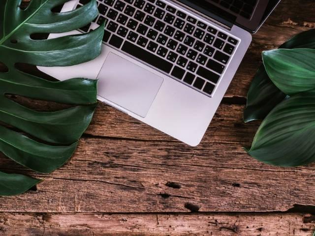 Un ordinateur portable sur une table en bois au milieu de feuilles d'arbre