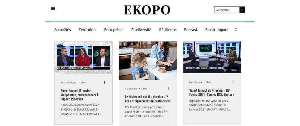 Capture d'écran du site Ekopo