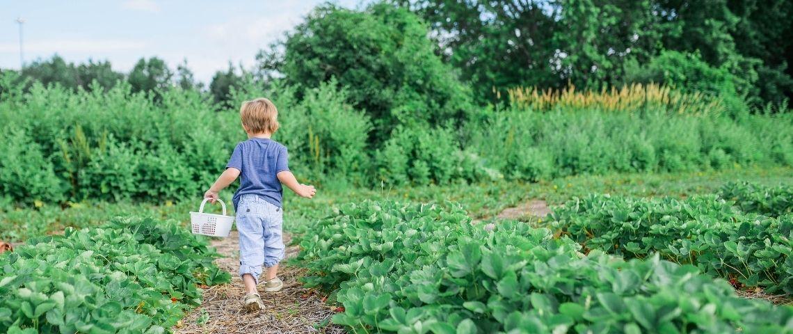 Un enfant qui court dans un champ
