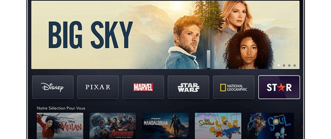 Capture d'écran de l'interface Disney+ Star