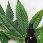 Feuille de cannabis avec une petite fiole d'huiles essentielles sur le devant de l'image