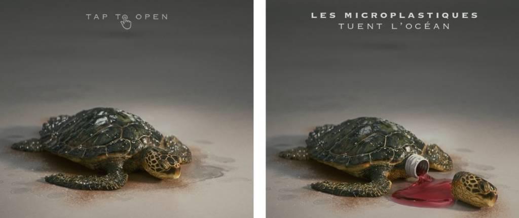 A gauche une tortue, à droite une tortue décapitée