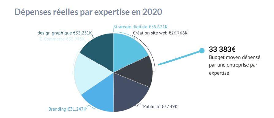 Graphique des Dépenses réelles par expertise en 2020