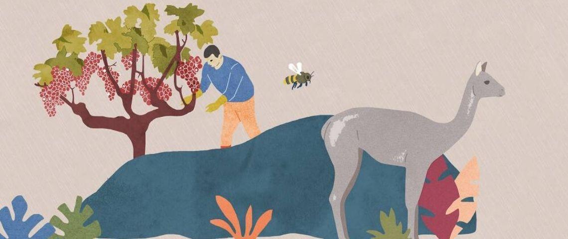 Illustration d'un homme s'occupant d'un arbre dans avec des animaux à ses côtés