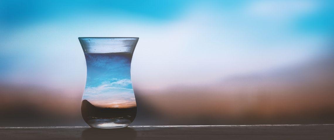 Eau dans un vase avec un ecosystème reconstitué