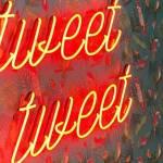 """Un mur avec du papier peint et des néons rouges indiquant """"tweet tweet"""""""