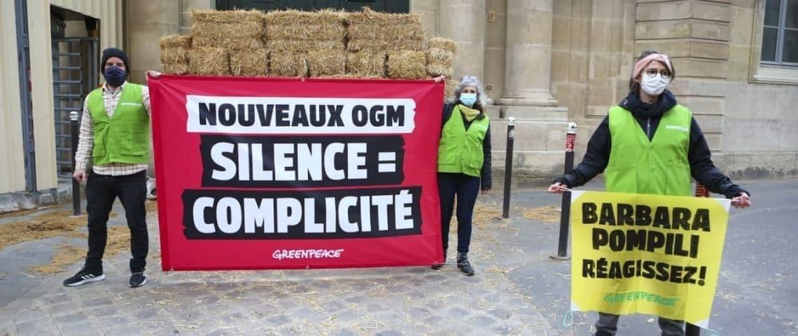 Manifestant Greenpeace devant le ministère de la Transition écologique