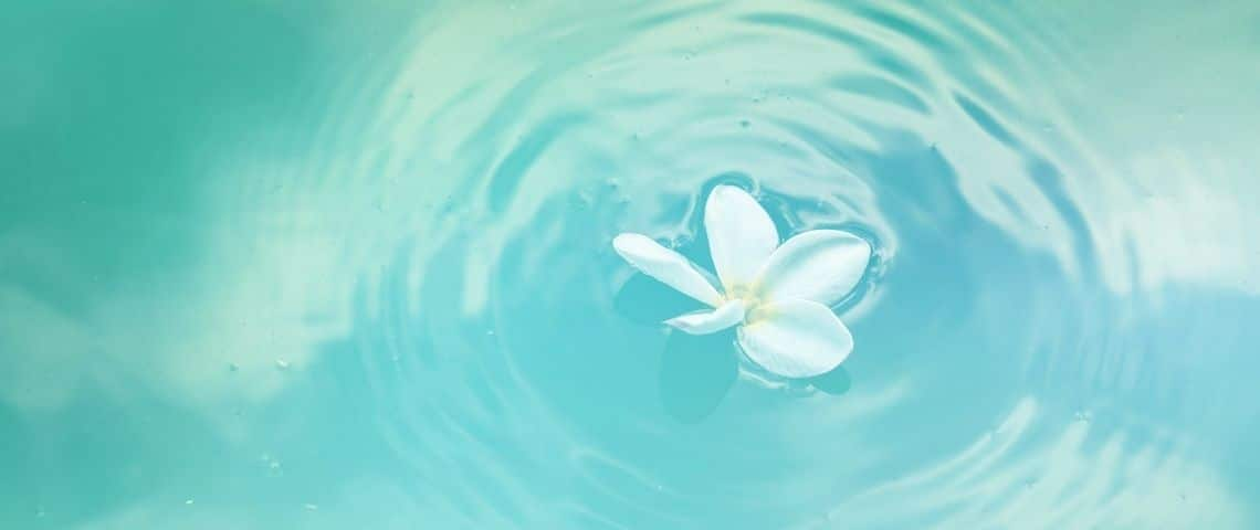 Eau avec une fleur flottant à la surface